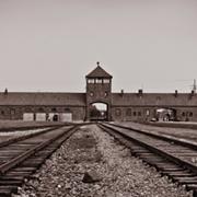 מבוא לתולדות השואה